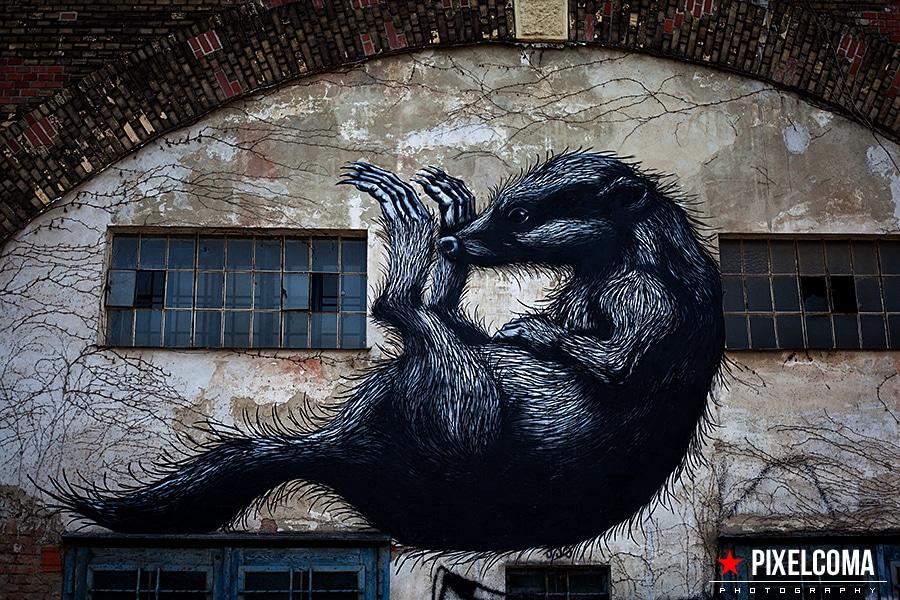ROA, Wien, Grafiti