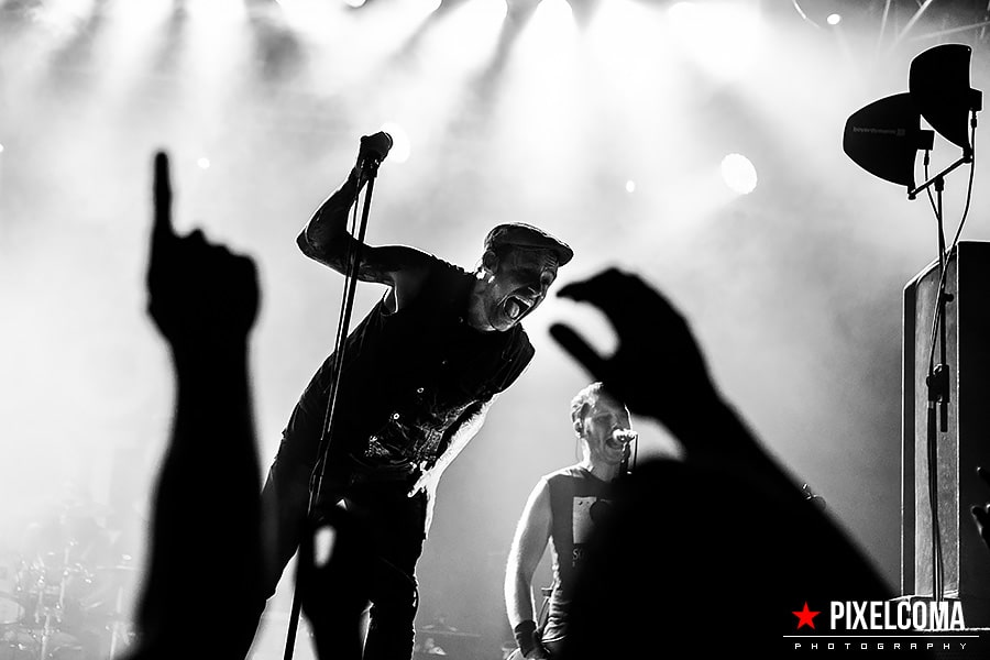 Donots_17